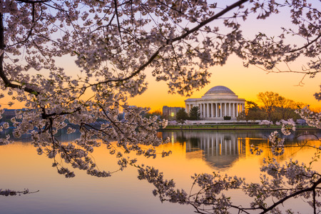 jefferson: Washington, DC at the Tidal Basin and Jefferson Memorial during spring.