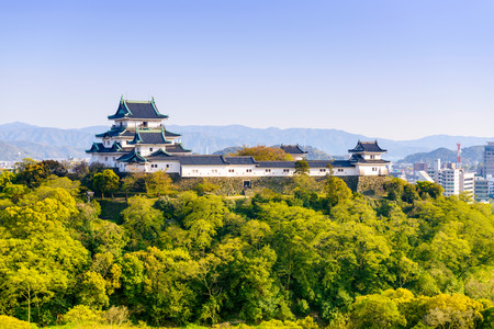 Wakayama, Japan Castle and downtown cityscape.