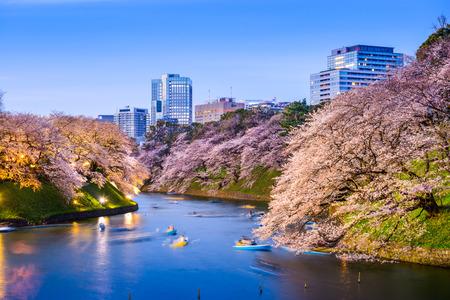 도쿄, 일본에서 Chidorigafuchi 제국 궁전 해 봄 시즌 동안. 스톡 콘텐츠