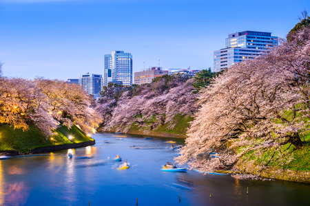 imperial: Tokyo, Japan at Chidorigafuchi Imperial Palace moat during the spring season.