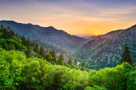 mountain valley: Newfound Gap in the Smoky Mountains, Tennessee, USA.