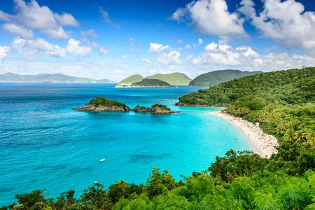 tropicale: Trunk Bay, St John, Îles Vierges américaines.