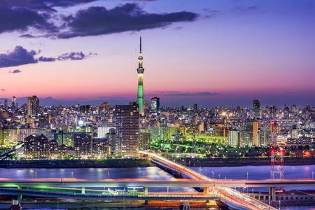 도쿄, 일본 도시의 스카이 라인.