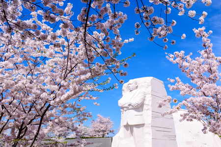 civil rights: WASHINGTON - APRIL 12, 2015: The memorial to the civil rights leader Martin Luther King, Jr. during the spring season in West Potomac Park. Editorial