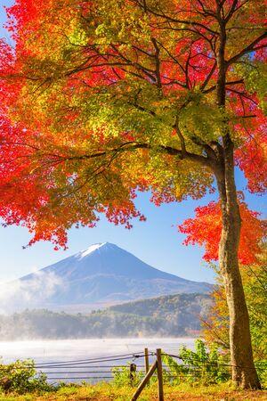 Mt. Fuji, Japan from Kawaguchi Lake in the autumn season.
