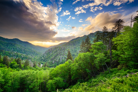 smoky mountains: Sunset at the Newfound Gap in the Great Smoky Mountains. Stock Photo