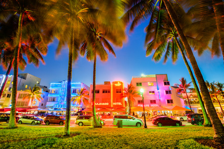 beachfront: MIAMI, FLORIDA - JULY 5, 2016: Palm trees line Ocean Drive. The road is the main thoroughfare through South Beach. Editorial