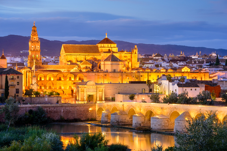 Cordoba, Spain old town skyline at the Mosque-Cathedral at night.