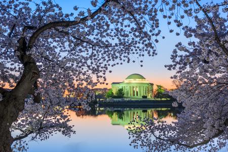 seaonal: Washington, DC at the Jefferson Memorial during spring.