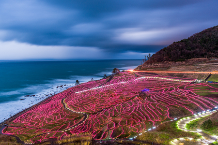 hokuriku: Wajima, Japan at Shiroyone Senmaida rice terraces during a winter light up. Stock Photo