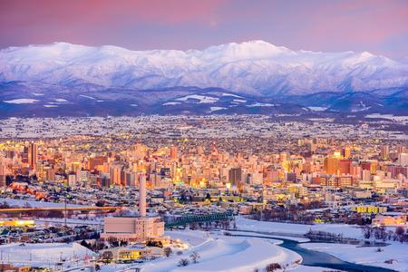 아사히카와, 일본 홋카이도의 겨울 풍경입니다.
