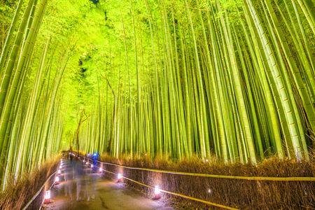 京都の竹林。 写真素材