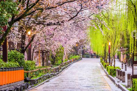 祇園白川、春の京都。