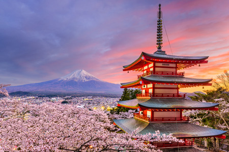 Fujiyoshida, Japan at Chureito Pagoda and Mt. Fuji in the spring with cherry blossoms. 報道画像