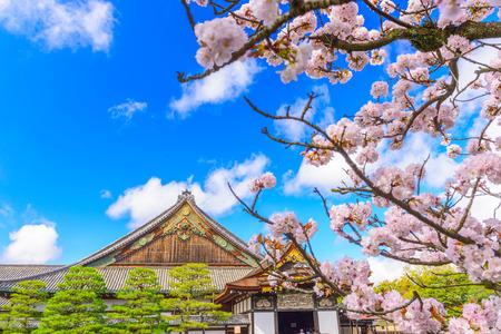 Kyoto, Japan at the Ninomaru Palace of Nijo Castle during spring season. (sign reads: