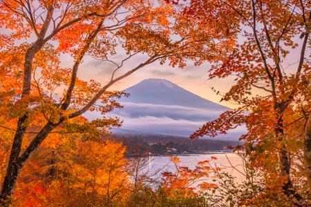 Mt. Fuji, Japan autumn at Yamanaka Lake at dusk.