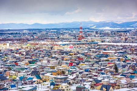 Asahikawa, Hokkaido, Japan skyline in the winter.