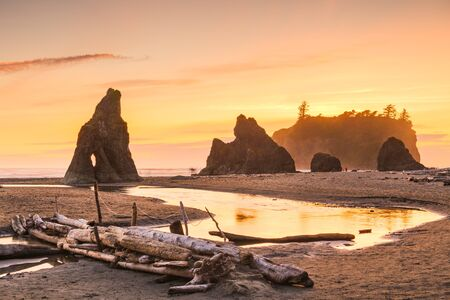 Olympic National Park, Washington, USA at Ruby Beach at dusk.