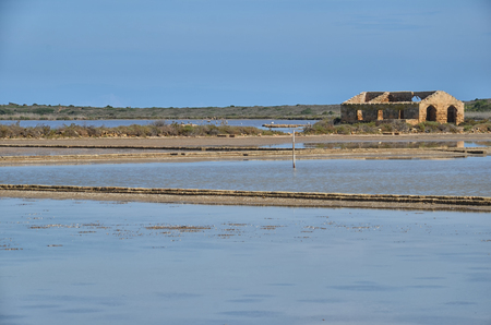 fishery products: View of the tanks where flamingos nest in Sicily