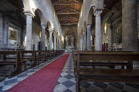 nave: View of the nave of church in Pisa