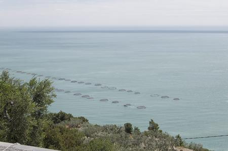 pisciculture: View of extensive aquaculture in the Mediterranean sea Stock Photo