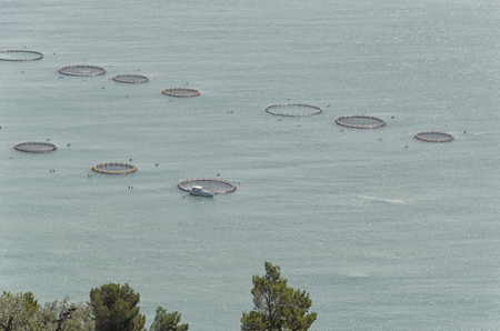 shrimp boat: View of the enclosures of a fish farm Stock Photo