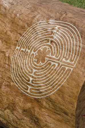 View of strange maze engraved on a tree