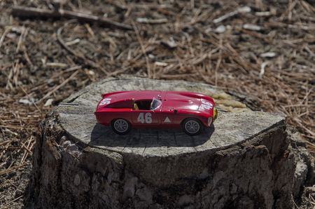 View of a scale model of a race car