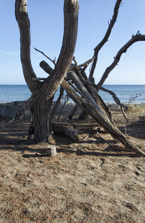 View of a shelter of a shipwrecked