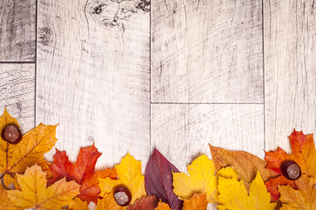 background wood: Wooden autumn background with chestnut