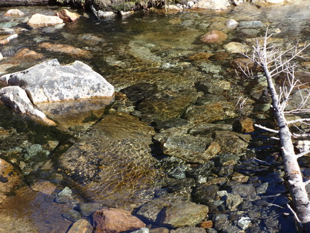 coldwater: Fall came quietly like a flowing stream