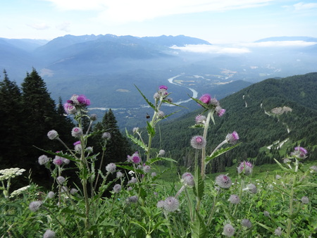 A view from Sauk mountain 写真素材