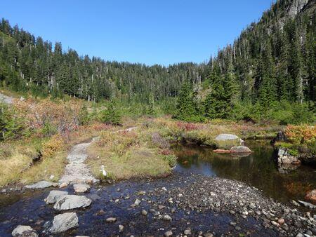 A stream runs through a valley