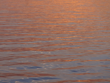 glimmering: sunset reflection on water