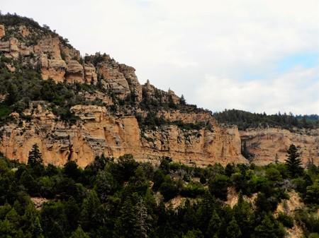 Sandstone cliff in Cedar Canyon