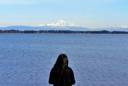 pacific northwest: Looking at the beautiful landscape of the Pacific Northwest Stock Photo