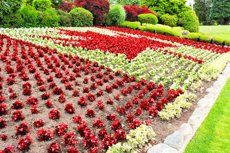 Red and white flowers planted in a canadian flag theme in a flower red and white flowers planted in a canadian flag theme in a flower bed at a mightylinksfo