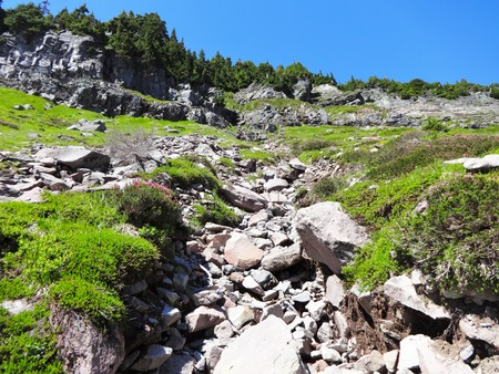 decreased: Decreased mountain stream in summer Stock Photo