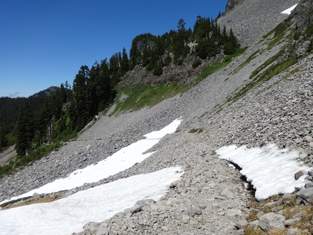 land slide: Scree cover area of Chain Lakes Trail in the Mount Baker Wilderness