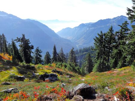 Autumn color painted grass on the slope, and the view of North Cascades and the valley