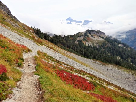 Slope of Chain Lakes trail with fall colors