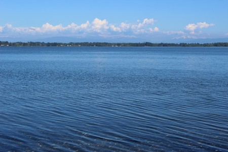 currents: Waves move into Drayton Harbor on an afternoon in early summer