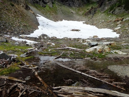 Leftover snow field on a Yellow Aster Butte trail in the North Cascades Stock fotó