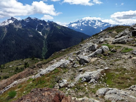 A panoramic view of the North Cascade mountains in summer