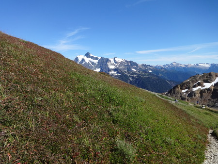 Peek a boo view of Mount Shuksan from a grass slope in summer Stock Photo