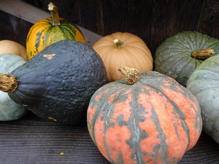 A varieties of squash and pumpkins on a farm stand 写真素材