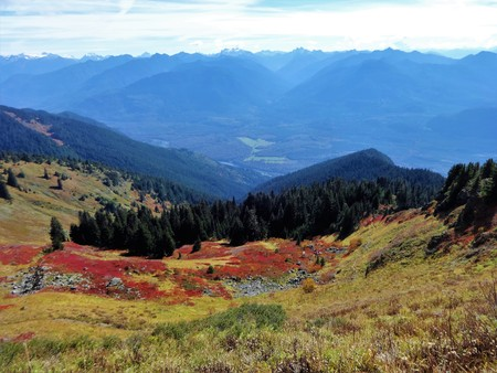 Colorful fall foliage on Saul Mountain with a view of the North Cascades