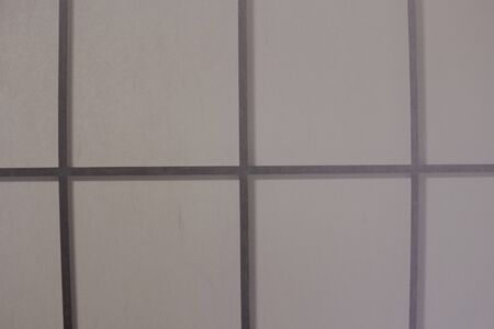 Textura de pantalla shoji translúcida, puerta de partición tradicional japonesa