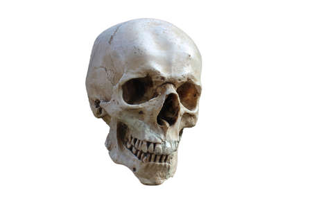 Skull cut out Stock Photo