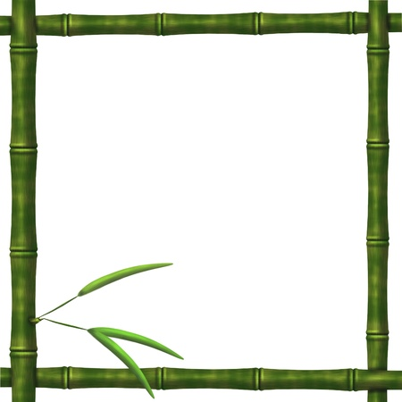 Framework from bamboo branches on a white background photo